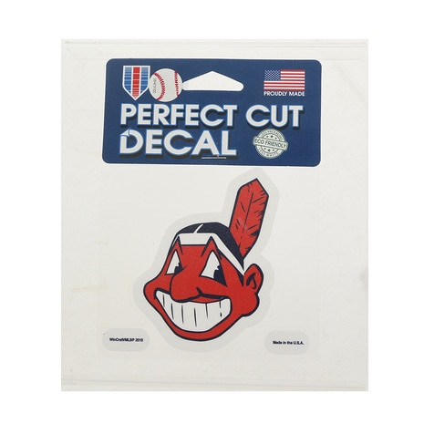 PerfectCutDecal 4x10 93867010 INDIANS