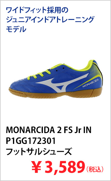 MONARCIDA 2 FS Jr IN